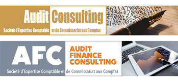 AUDIT CONSULTING – AFC